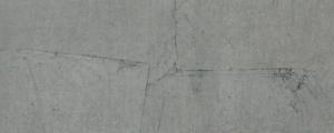 Foglia Argento/Nero